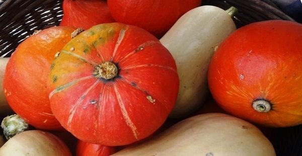 Ogled dobrih praks in 7. sadjarske razstave sadja s travniških sadovnjakov v Mozirju
